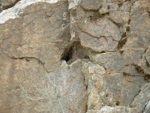 Geode con Quarzo e Ortoclasio